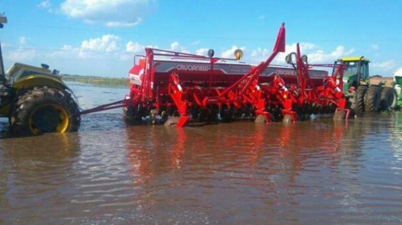 Las cosechadoras vuelven a los lotes en Chaco en una batalla contrarreloj