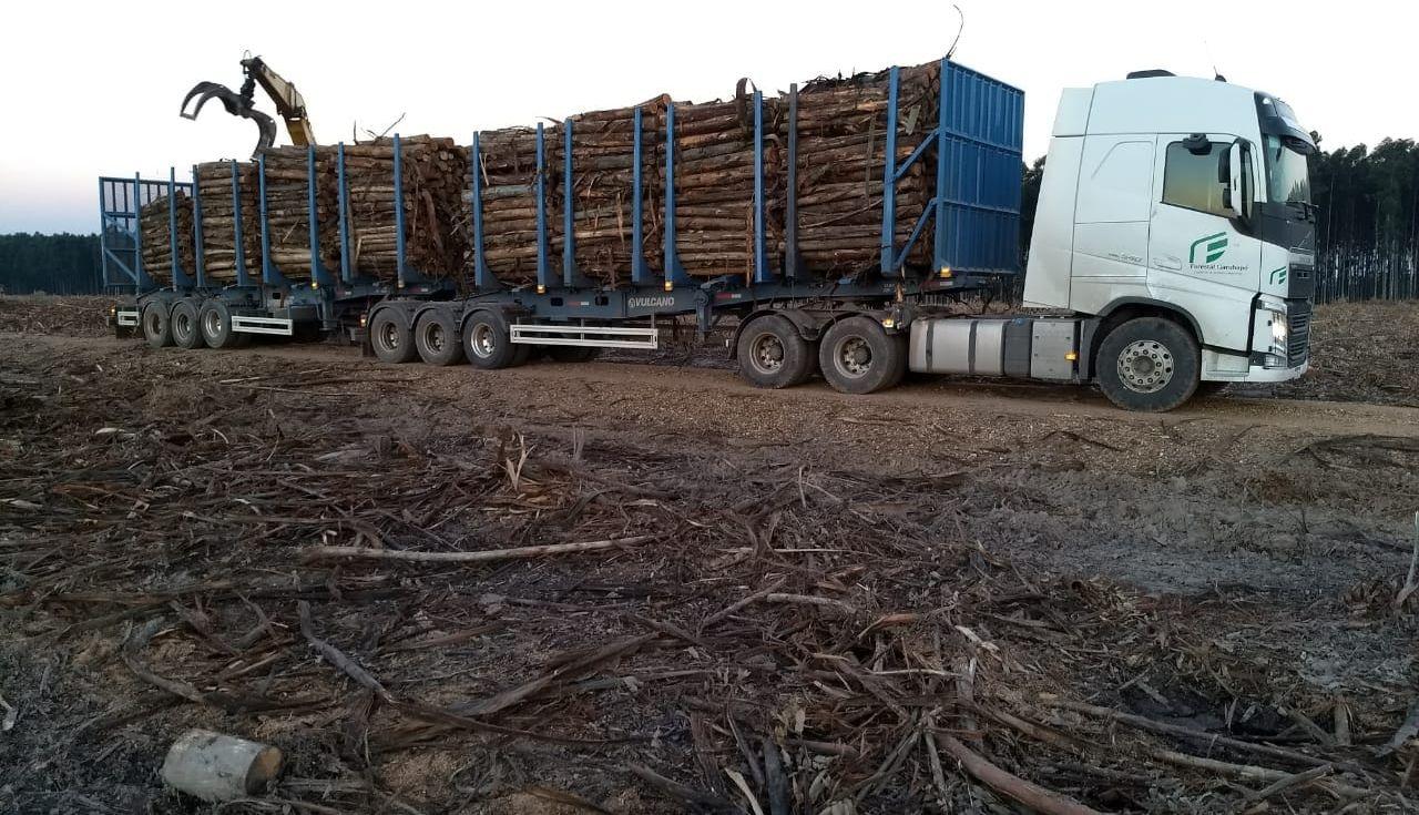 Autorizaron la circulación de bitrenes en Corrientes