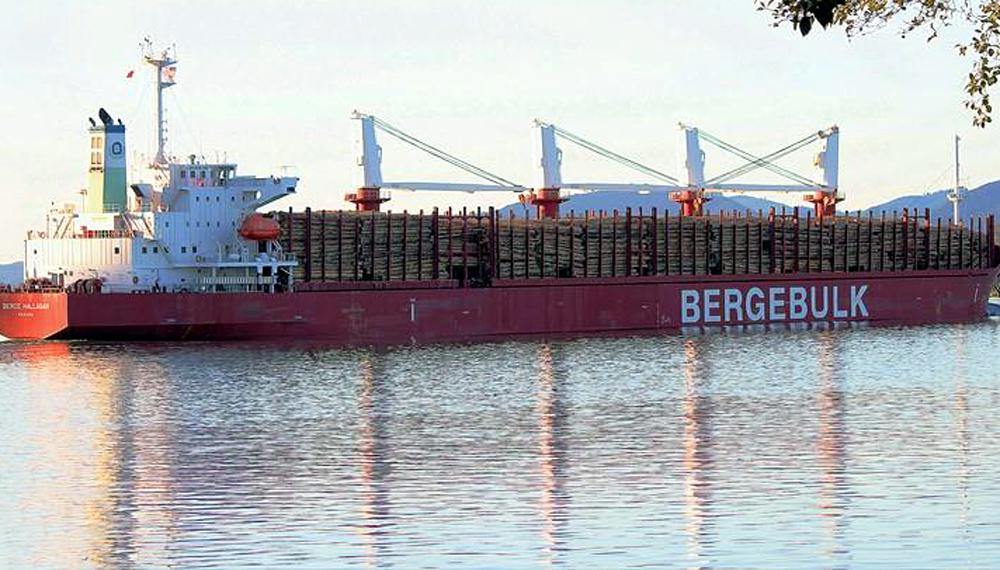 """""""Las cargas de carne aviar que se efectúen por vía marítima se incorporan a la VUCE"""""""