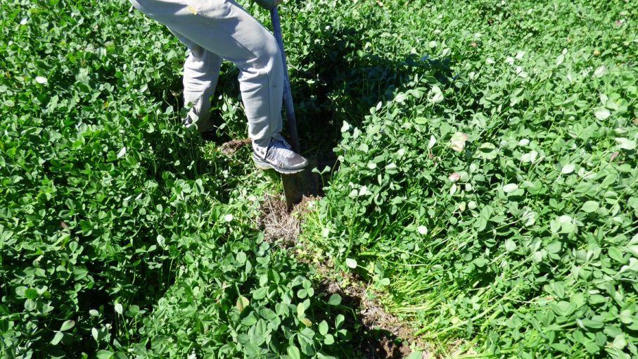 """Santa Fe avanza en un sistema de gestión del suelo """"a la uruguaya"""""""