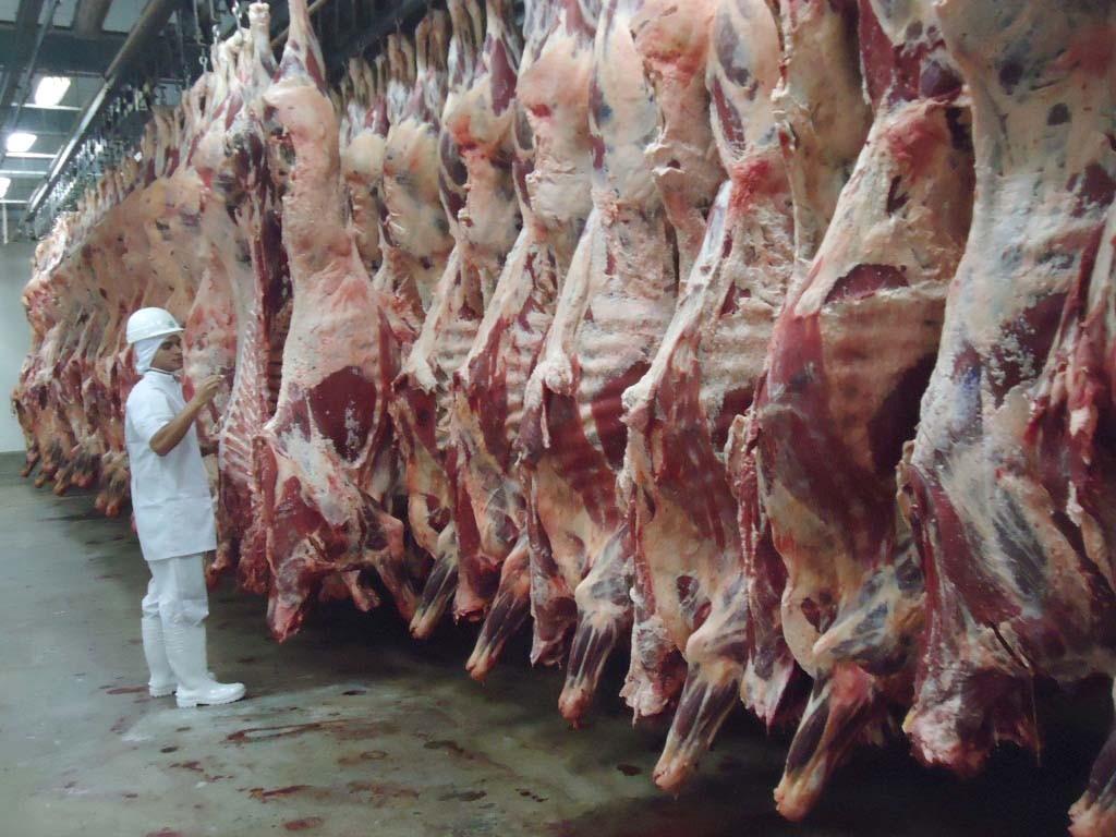 """""""La mesa de carne pide la eliminación de las retenciones  y mejorar la política crediticia"""""""