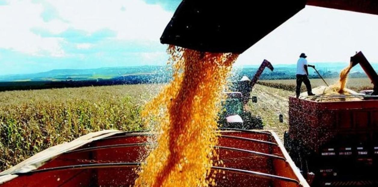 Las exportaciones de agroalimentos aportaron 32.300 millones de dólares en el último año