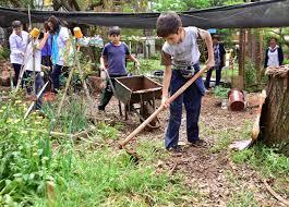 """Misiones: genera un """"Programa de Arraigo Rural"""" para familias y productores campesinos"""