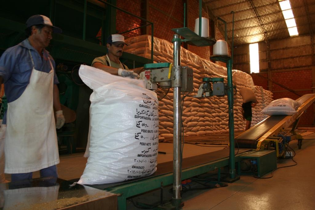 Cancilleria: La yerba mate fue destacada entre las oportunidades comerciales ante cámaras empresariales del mundo
