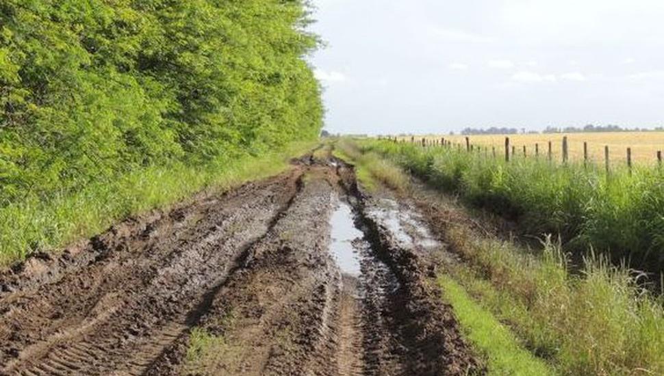 El sector agropecuario advierte medidas para los caminos de los campos
