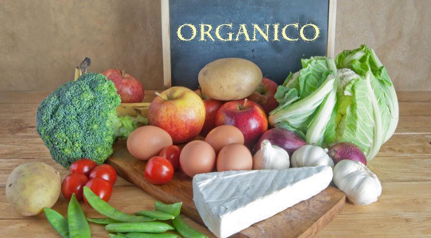 Agricultura: estimula la elaboración orgánica con un fuerte compromiso federal