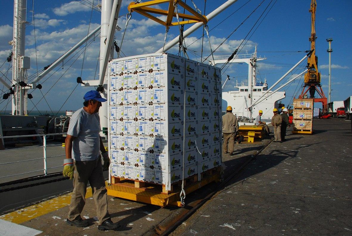 """Basterra: """"Argentina necesita de las PyMEs Agroalimentarias para aumentar las exportaciones con valor agregado"""""""