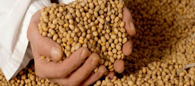 """Mercados: """"positiva jornada para la soja"""""""