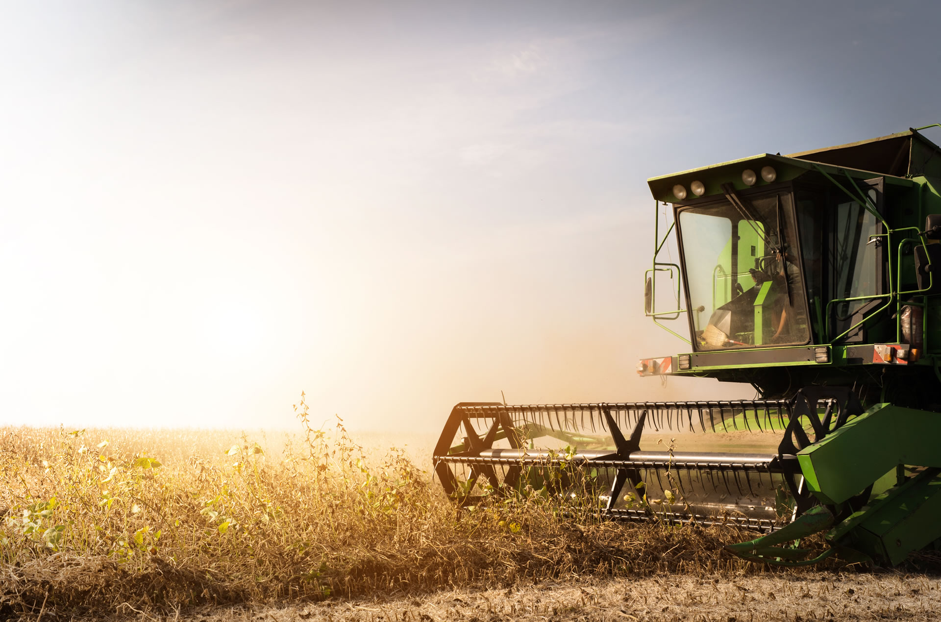 "Consejo Agroindustrial: ""se espera un dialogo pleno con Julian Dominguez"""